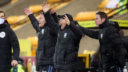 Sheffield Wednesday manager Tony Pulis penalty appeals Norwich City Championship deeat