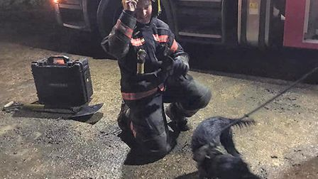 Dramatic drain pipe rescue for Daisy the dog in Huntingdonshire village. Picture: CAMBS FIRE