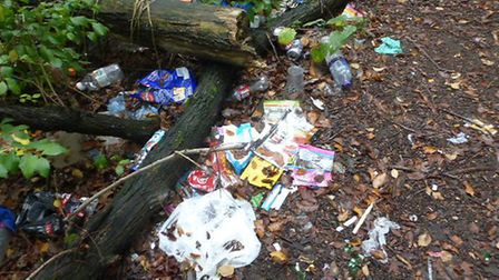 Hitchin Hates Litter, the Comet's anti-littering campaign, will continue. Picture: Supplied