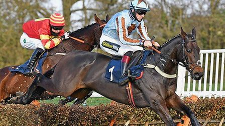 Chef De Troupe was the winner of race one at Huntingdon Racecourse's November 1 meeting. Picture: JOCKEY CLUB HUNTINGDON