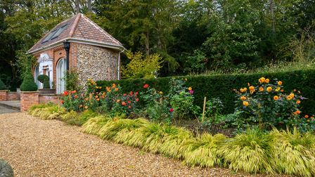 Dahlias in autumn at Caldrees Manor, Ickleton. Picture: Simon Baylis for The National Garden Scheme