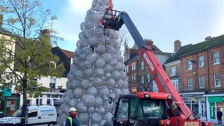 Wisbech prepares to welcome the new Christmas tree, a one-off special, that was donated to the town council by...