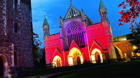 The Cathedral will be lit up for Baby Loss Awareness Week. Picture: Supplied
