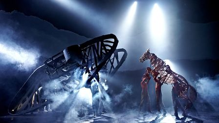 The 2011 War Horse West End cast by Brinkhoff & Mögenburg. National Theatre Live will broadcast War Horse again to UK...