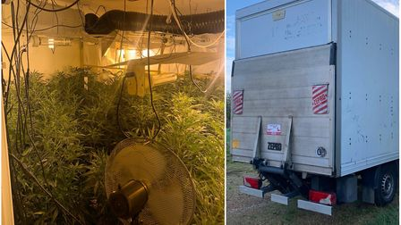 Cannabis factory worth £250,000 discovered in small Hunts village. Picture: CAMBS POLICE