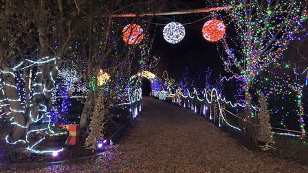 Please send us pictures of your festive decorations to help us Brighten Up Christmas. Picture: The Baxter family