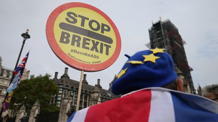 Anti-Brexit demonstrator outside the Houses of Parliament. Photograph: Jonathan Brady/PA.