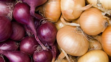 120 employees work together at the G's Ramsey site, year-round, to supply onions and garlic to the UK's major supermarkets.