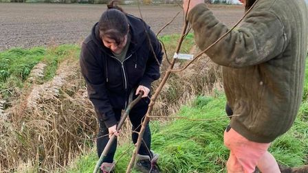 Paul Day, owner of Bramblebee Farms, is calling on residents to donate towards a native tree or a metre of native hedging...
