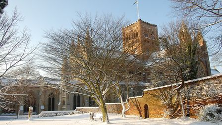 St Albans Cathedral from Vintry Gardens