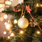 Find out where you can celebrate Christmas in church this year...