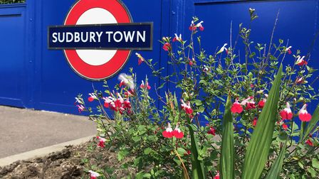 Sudbury Town Station has won a Bees Needs Award 2020 from DEFRA. Picture: Ruaidhr? Carroll