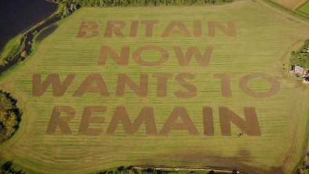 """""""Britain now wants to remain"""" was ploughed into a field in Wiltshire by campaigners Led By Donkeys."""