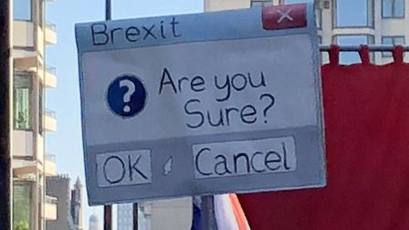 A placard opposing Brexit. Photograph: Andrew Stoneman.
