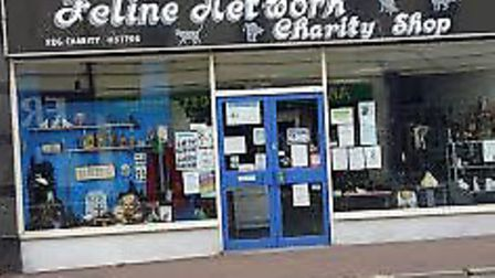 Feline Network has a large, two-floor charity shop in the centre of Paignton