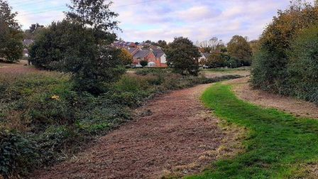 Looking across the green space over to Centenary Way (spot the staffie!). Photo: Groundwork South