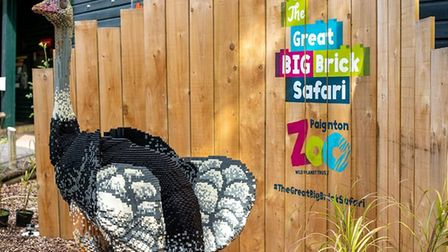 Ormond the brick ostrich, which stands at 1.6 metres tall