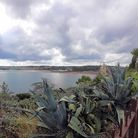 Cliff Walk which has a tropical flavour thanks to Paignton Zoo founder Herbert Whitley who donated t