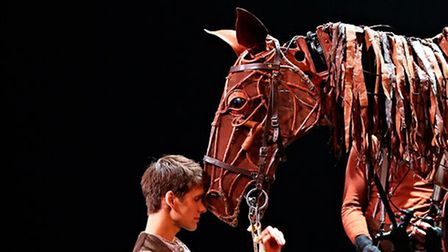 The play War Horse can be seen on screen at Royston Picture Palace on December 19. Picture: SAFFRON SCREEN/ NATIONAL...