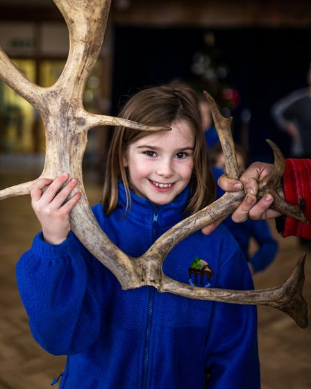 Harwood Hill School had a reindeer treat in time for Christmas. Picture: Jodie Andrews - www.fablesi