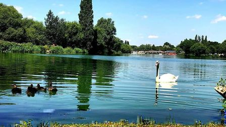 Stanborough Lakes. Picture: WHBC