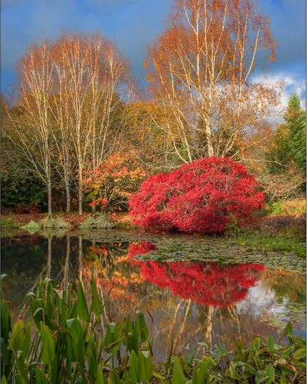 Reflecting on Autumn's Glory Picture: John Marchbank