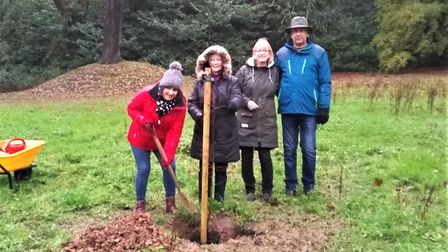 Four people planting a tree in a park