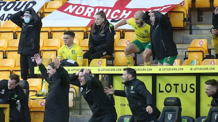 Norwich Head Coach Daniel Farke and the whole bench react to a foul on Todd Cantwell of Norwich by H