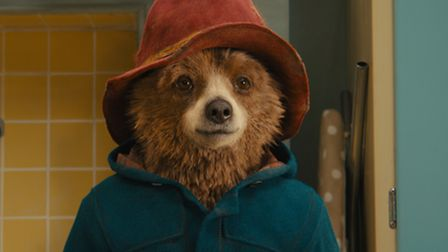 A bear in a red hat and a blue jacket