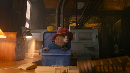 Paddington pops out of a dustbin