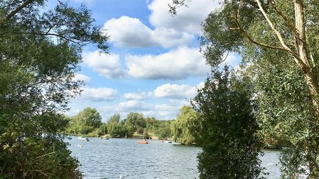 The results of the first phase of Fairlop Waters and next steps will be presented at an online event
