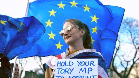 An anti-Brexit protester campaigning in Westminster ahead of January 31st. Photograph: Kirsty O'Conn