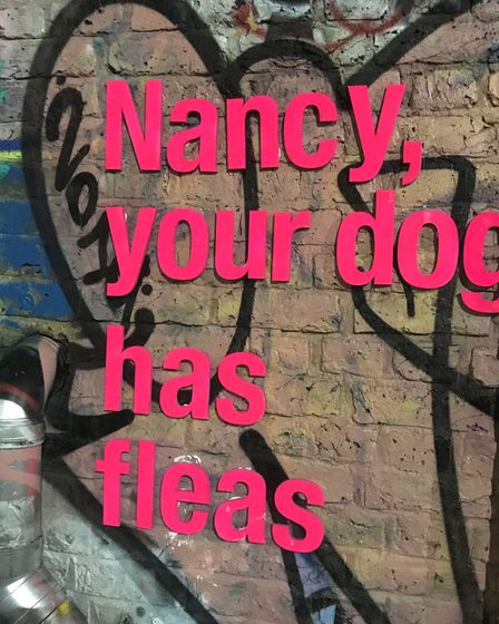 """Outdoor print by Real Hackney Dave which reads: """"Nancy, your dog has fleas."""""""