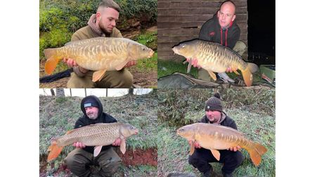 Carp from Newbarn Fisheries - top left Call Ward, bottom left Wayne Hockley and bottom right Scott Bryant