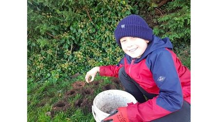 Schoolboy pictured planting daffodils