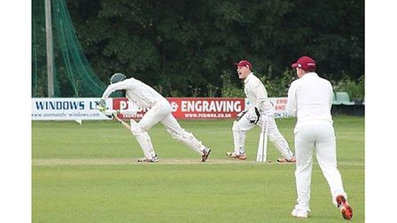 Will Plummer celebrates a Weston wicket