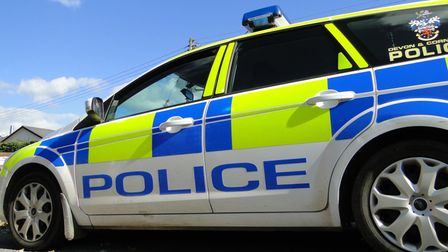 Devon and Cornwall Police has dedicated 'Covid cars' responding during lockdown. Picture for illustration only.