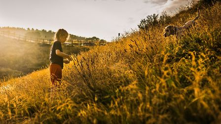 A Shared Summer Evening. Picture: Sarah Hall