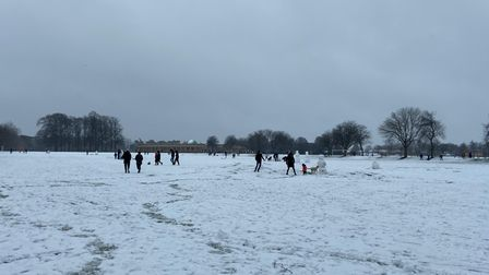 People enjoying the snow in Eaton Park.