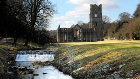Snowdrops on the banks of the River Skell at Fountains Abbey