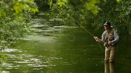 Man versus trout on a chalkstream