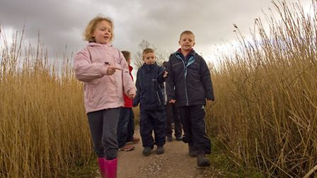 Children looking for model bitterns in reed bed, Leighton Moss RSPB Reserve by Andy Hay rspb-images.