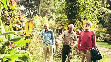 Philip Howse, Steven Griffiths (Curator, Abbotsbury Subtropical Gardens and Iain admire some of the