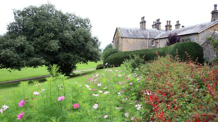 Looking across towards Downham Hall by fuchsia hedge and cosmos