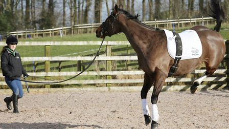 Carolann Shaw lunging 'Ze Finale' in the outdoor school