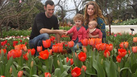 Collyer Family: Alice and Stu with children Nancy (2yrs) and Eula (4mths) enjoy the tulips at the Ed