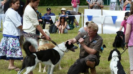 TV vet Luke Gamble judging the dog show at Paws in the Park at Wimborne St Giles
