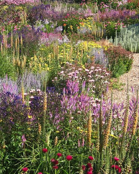 Spend time in the tranquil setting of the Yeo Valley Organic Garden