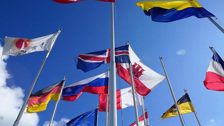A series of flags representing different countries alongside the European flag. Photograph: Trecosa