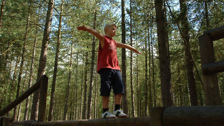 Entertain the whole family at Moors Valley Country Park